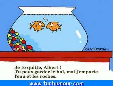 INsoliteRIgoloCOquin - Page 17 Rupture_poissons